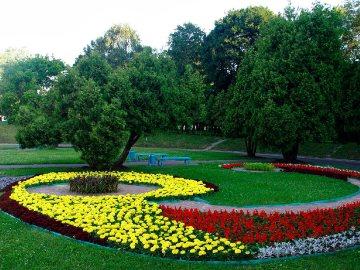 Деревья, кустарники, цветники